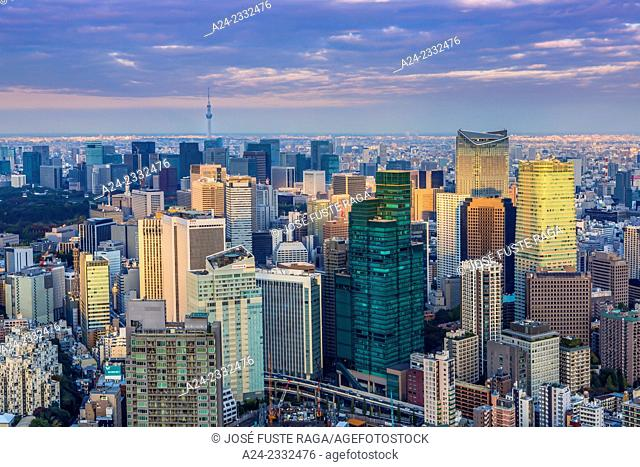 Japan , Tokyo City, Down town Tokyo and Sky Tree tower