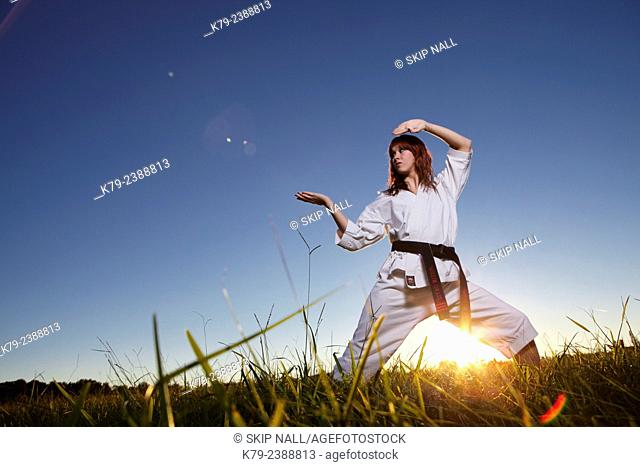 Female martial arts expert practicing