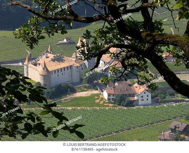 castle,aigle,vaud,swiss