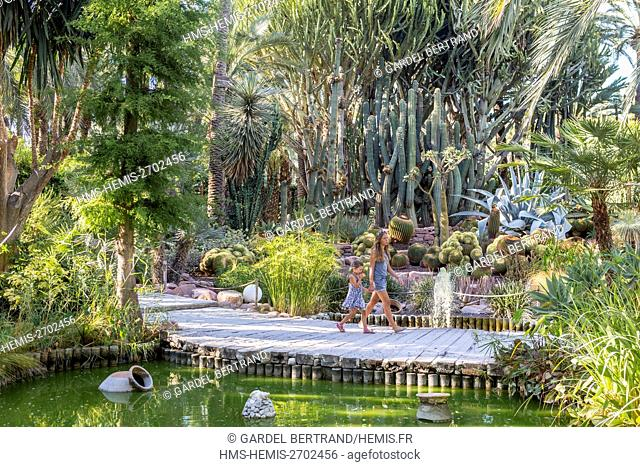 Spain, Valencian Community, Elche, palm grove, listed as World Heritage by UNESCO, the garden of the parish priest (Huerto del Cura)