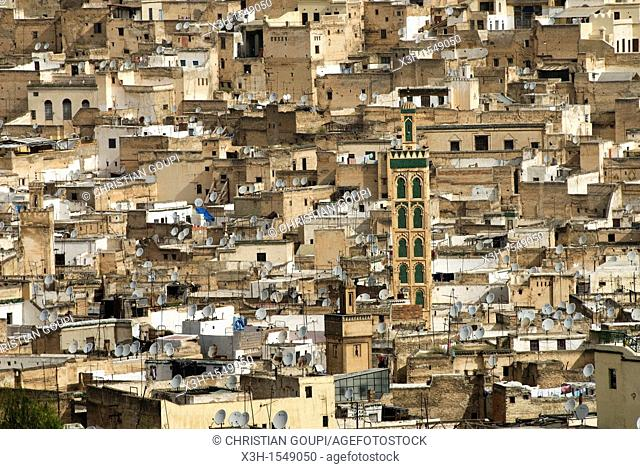 the Medina of Fes viewed from Borj south, Morocco, North Africa