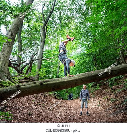Boy in forest doing handstand on fallen tree