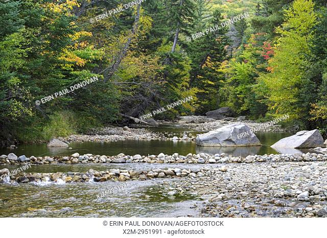 Zealand River in Bethlehem, New Hampshire USA during the autumn months