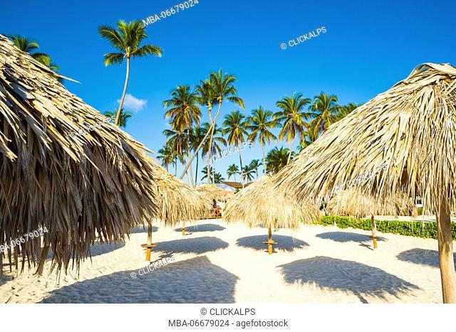 Bavaro Beach, Bavaro, Higuey, Punta Cana, Dominican Republic. Thatch beach umbrellas