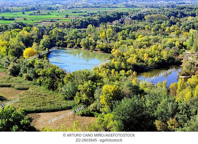 The Galacho of Juslibol is a natural site near of the river Ebro. Saragossa, Spain