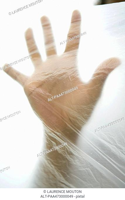Hand inside plastic bag, cropped view