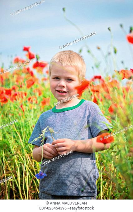 Positive cute boy in field with red poppies and blue sky. Shallow depth of field