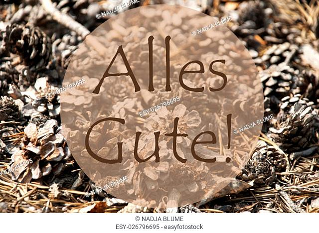 Texture Of Fir Or Pine Cone. Autumn Season Greeting Card. German Text Alles Gute Means Best Wishes