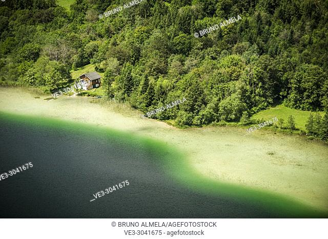 Cabin at Le Grand Maclu lake (department of Jura, region of Bourgogne-Franche-Comté, France)