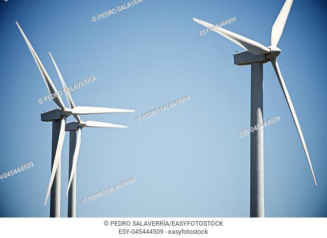 Windmills for electric power production, Burgos Province, Castilla Leon, Spain