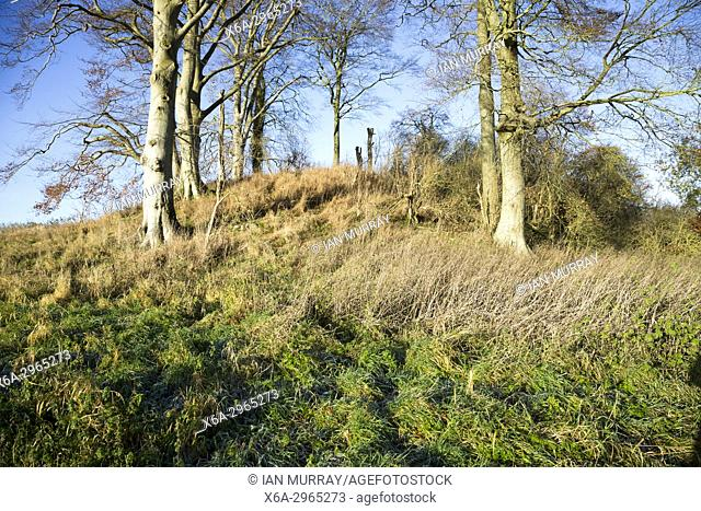 Neolithic long barrow in chalk downland countryside near East Kennet, Wiltshire, England, UK