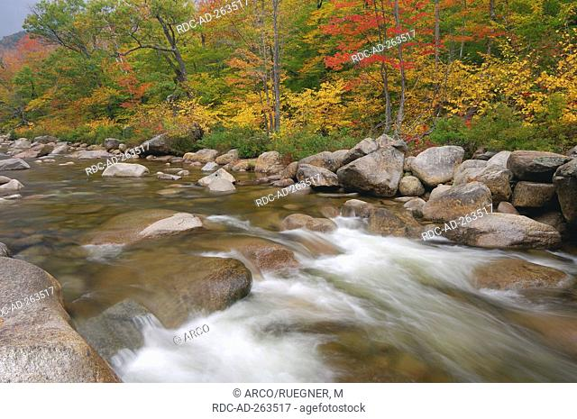 Swift River in autumn White Mountain national forest White Mountains New Hampshire USA Indian Summer