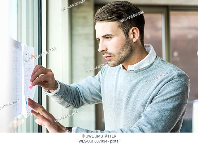 Young man examining papers at the window