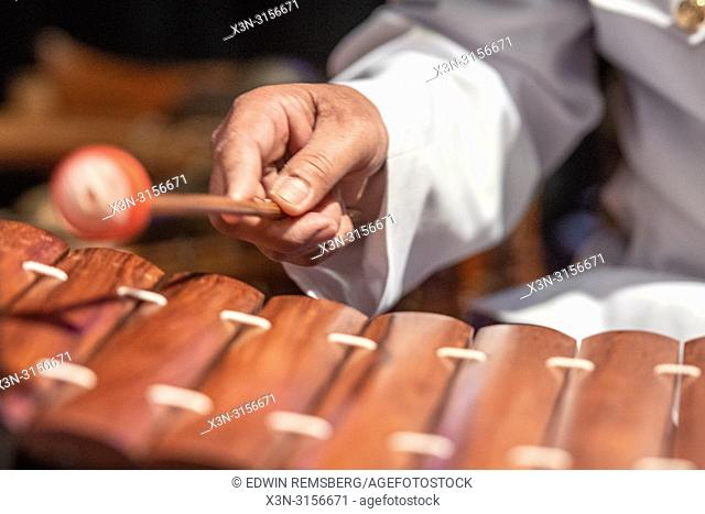 A man plays the Roneat Aek (Bamboo / wooden xylophone)