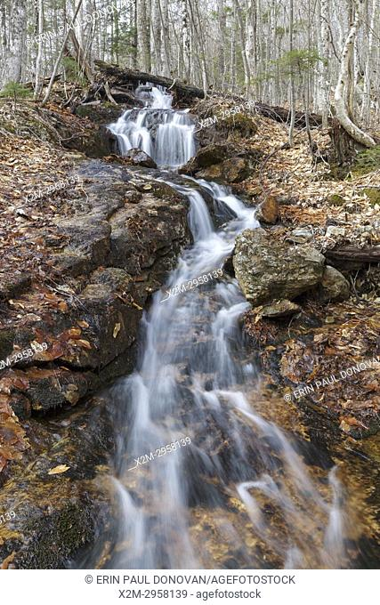 Halfway Brook in Hart's Location, New Hampshire during the spring months. This brook is off the Nancy Pond Trail