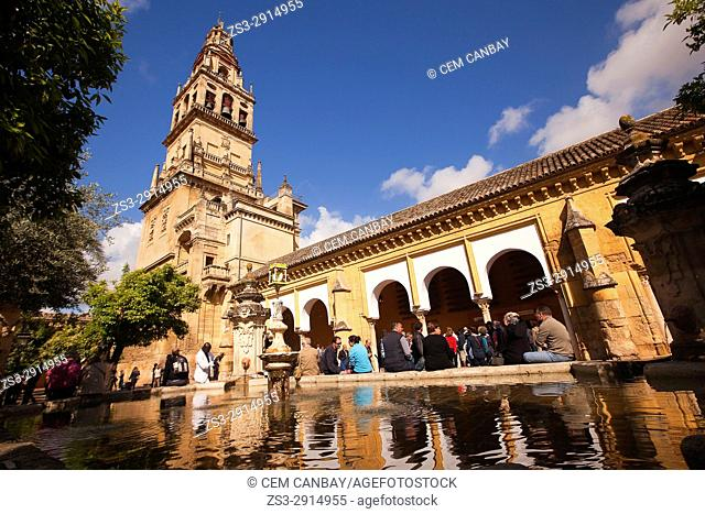 Visitors at the courtyard and the Cathedral, Cordoba, Andalucia, Spain, Europe