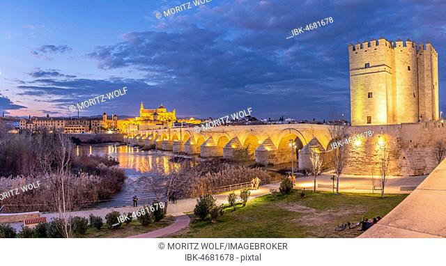 Illuminated fortress Torre de la Calahorra with Puente Romano, Roman bridge over Rio Guadalquivir, behind Mezquita, Catedral de Córdoba, night view, Cordoba