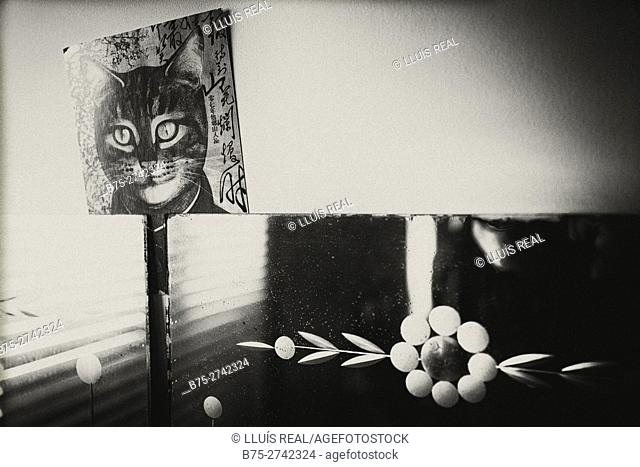 Mirror with ornaments and a poster of a cat's face. Mahó, Minorca, Balearic Islands, Spain