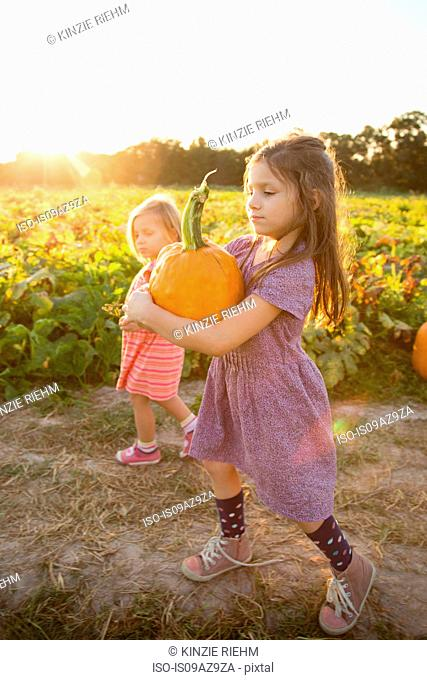 Young girl beside pumpkin patch, carrying pumpkin