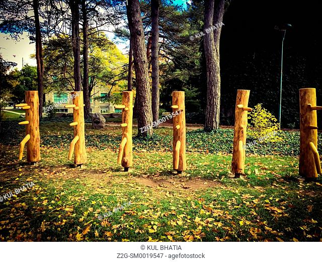 From Ash to Art: Stumps from trees threatened by the Emerald ash borer turned into sculptures, sometimes also used for practising martial arts, Ontario, Canada