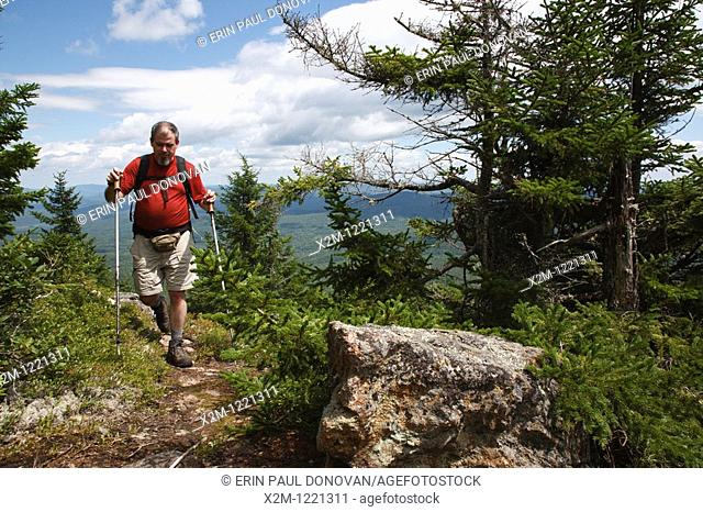 Caribou - Speckled Mountain Wilderness - A hiker ascends Mud Brook Trail in the White Mountain National Forest of Maine  Mud Brook Trail travels to the summit...