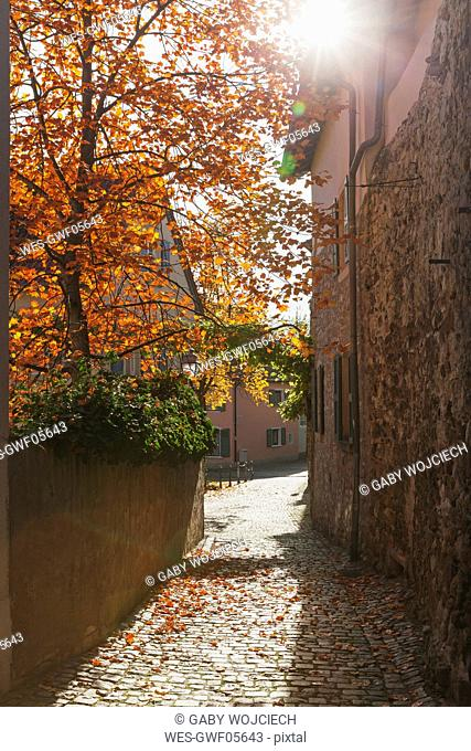 Germany, Rhineland-Palatinate, Freinsheim, city wall and empty alley in autumn