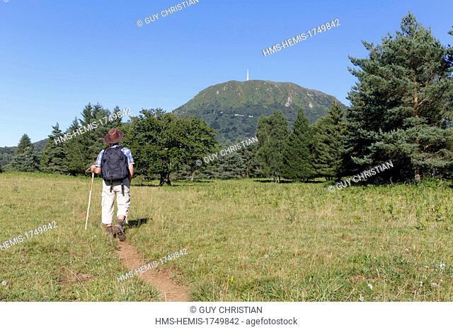 France, Puy de Dome, Parc Naturel Regional des Volcans d'Auvergne (Natural regional park of Volcans d'Auvergne), Chaine des Puys, hiker and Puy de Dome