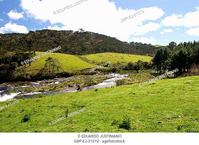Landscape, Silveira River, São José dos Ausentes, Rio Grande do Sul, Brazil