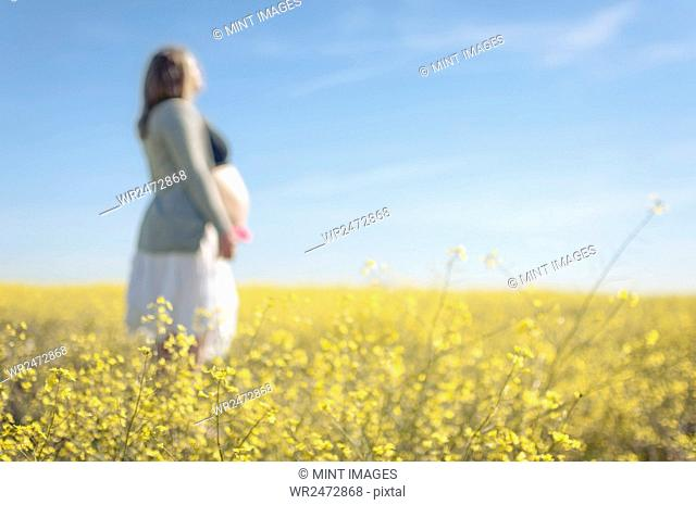 Pregnant woman touching her stomach, walking along a summer field
