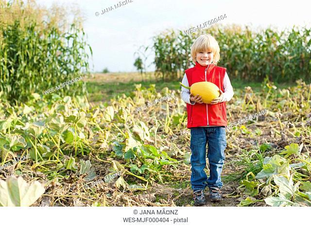 Little boy holding pumpkin