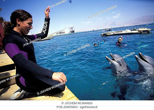 Eilat, dolphin trainer