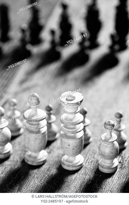 Close up of chess pieces lined up. Conceptual image of strategy and competition