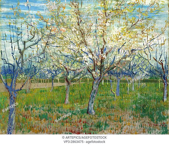 Vincent van Gogh - De roze boomgaard - Van Gogh Museum, Amsterdam