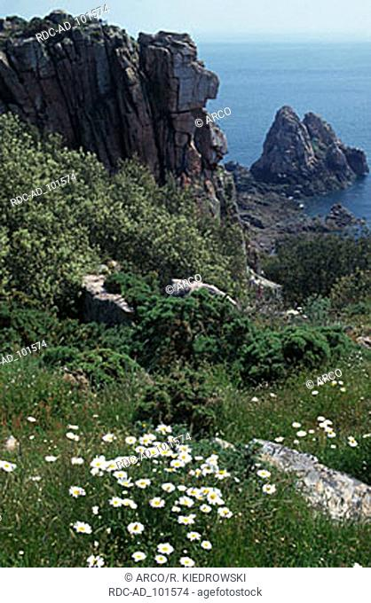 Coast at Beauport Bay Jersey Channel Islands Great Britain