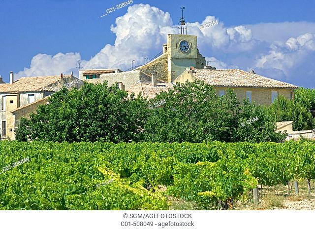 Vineyard and village. Buisson. Provence. France