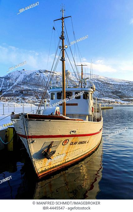 Former rescue boat, now sightseeing boat Olav Ringdal, Tromso, Troms, Norway
