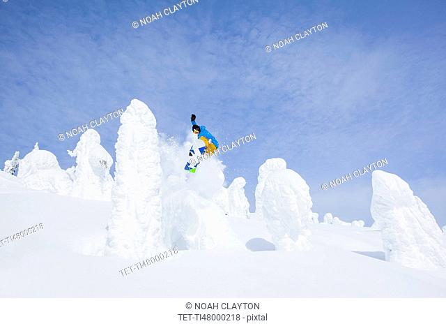 Snowboarder jumping over snowy tree