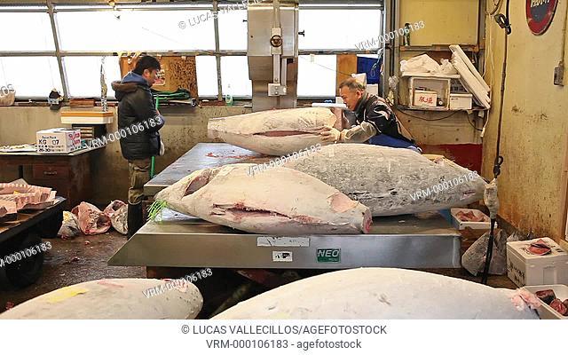 slicing the tuna,Tsukuji market, biggest fishmarket in the world.Tokyo city, Japan, Asia