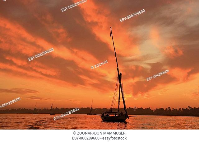 Felucca boat sailing on the Nile river at sunset
