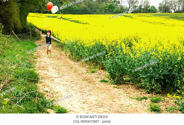 Boy running along yellow flower field track pulling red and white balloons