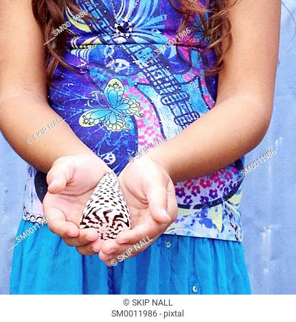The hands of a little girl holding a beautiful seashell