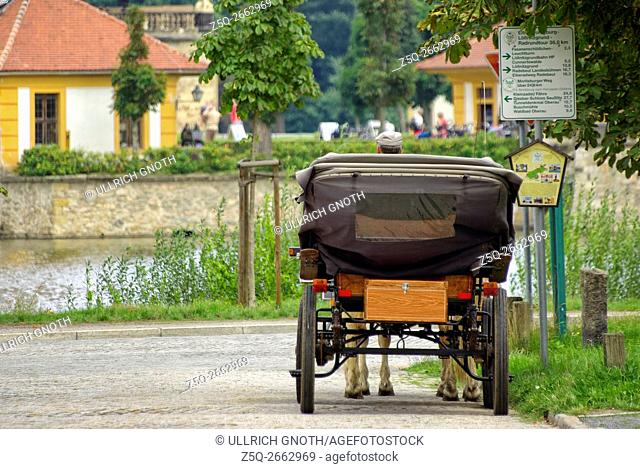 A horse-cab driver waiting for passengers, here in front of Schloss Moritzburg Castle near Dresden, Germany