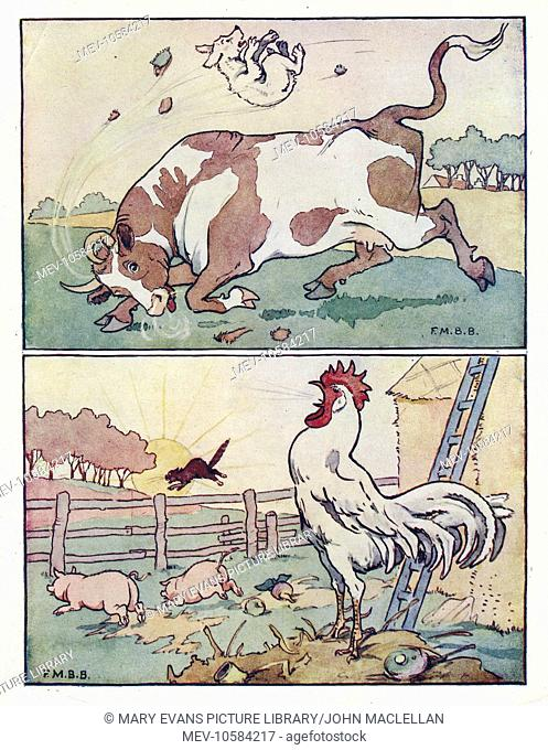 Nursery Rhymes -- two illustrations, showing a bull tossing an unfortunate dog into the air, and a cock crowing at sunrise, waking all the farmyard animals