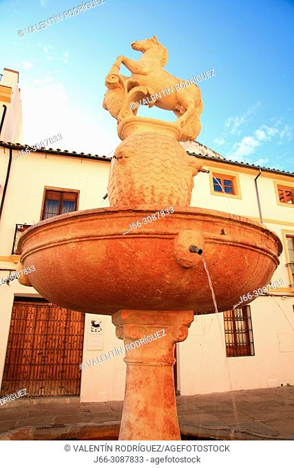Fountain of Potro in the Potro square. Córdoba