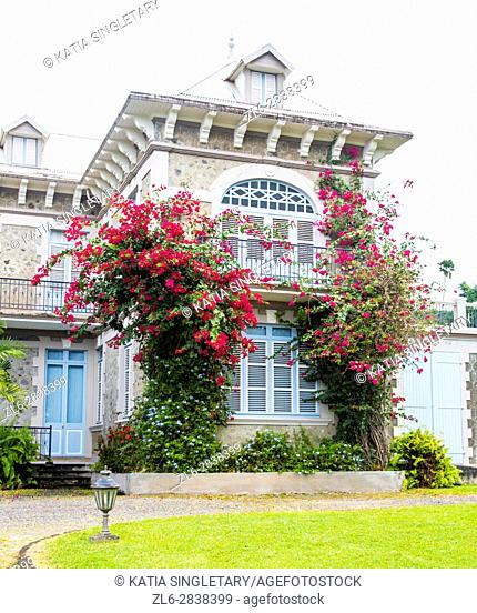 The gorgeous welcoming house of the Depaz distillery, filled with flowers growing and going up on the house wall