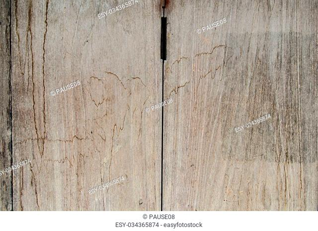 Wood texture. Nice and wooden