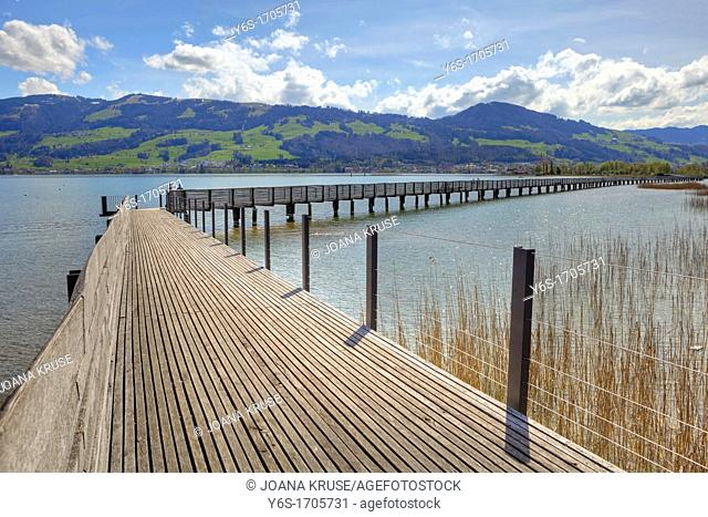 Wooden bridge Rapperswil-Hurden, Upper Lake, St  Gallen, Switzerland