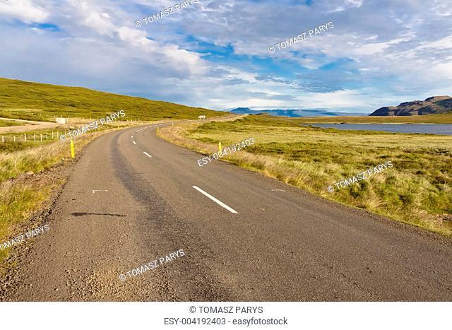 Route in Bjarkalundur village - Iceland