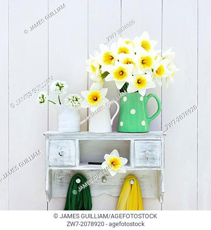 Narcissus and Primula flowers in ceramic containers on wooden shelf, still life