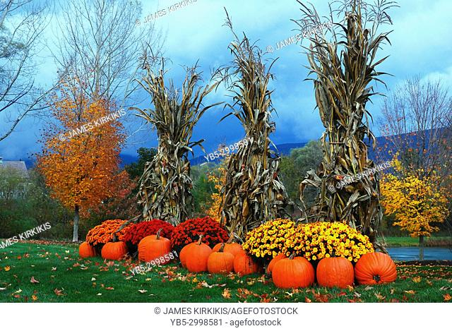 Autumn decorations sit under stormy skies in Vermont